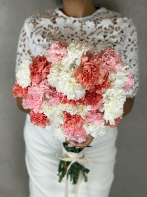 Fluffy Carnations – Deluxe